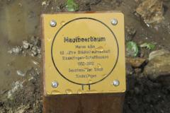 Schaffhausen 2012-7(offizieller Teil)