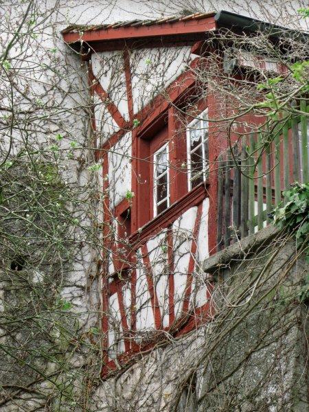 1schaffhausen2011-1