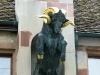 1schaffhausen2011-9